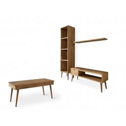 Conjunto madera: Mueble Tv + Estantería + Balda + Mesa centro elevable pino